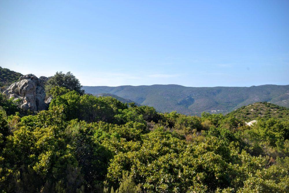 St Florent et le désert des Agriates